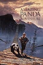 The Amazing Panda Adventure (1995) Poster