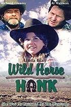Image of Wild Horse Hank