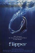 Image of Flipper