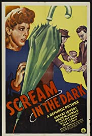 A Scream in the Dark Poster
