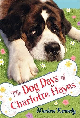 The Dog Days Of Charlotte Hayes Summary