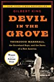 Devil in the grove : Thurgood Marshall, the Groveland Boys, and the dawn of a new America / Gilbert King