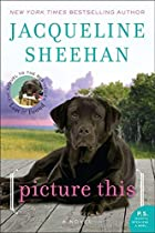Picture This: A Novel by Jacqueline Sheehan