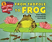 From Tadpole to Frog…