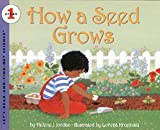 How a Seed Grows…