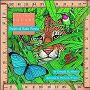 Tropical Rain Forest av Donald Silver