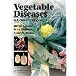 Vegetable Diseases A Color Handbook