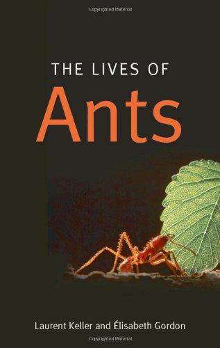 The Lives of Ants, Keller, Laurent; Gordon, Elisabeth