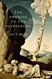 The Promise to the Patriarchs book cover
