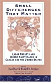 Small differences that matter: Labor markets and income, mai