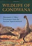 Wildlife of Gondwana / Patricia Vickers-Rich, Thomas Hewitt Rich ; principal photography by Francesco Coffa and Steven Morton