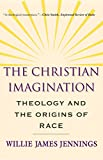 The Christian Imagination: Theology and the Origins of Race book cover
