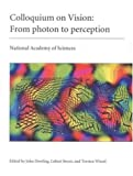 Colloquium on vision : from photon to perception