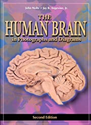 The human brain : in photographs and…