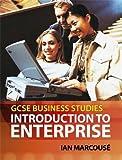 GCSE business studies : introduction to enterprise / Ian Marcousé