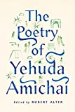 The poetry of Yehuda Amichai