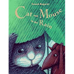 1,524 cat rain illustrations & vectors are available royalty-free.