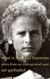 What is it all but luminous : notes from an underground man / Art Garfunkel
