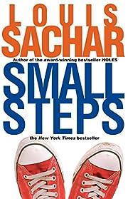 Small Steps (Holes Series) – tekijä:…