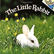 The Little Rabbit av Judy Dunn
