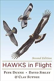 Hawks in flight : the flight identification…