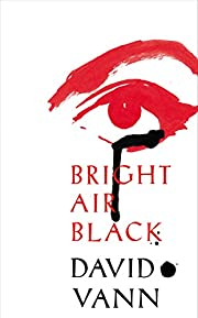 Bright Air Black por David Vann (author)