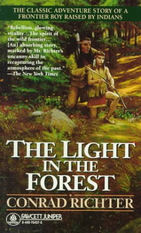 Lovely The Light In The Forest Photo Gallery