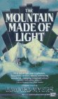 The Mountain Made of Light de Edward Myers