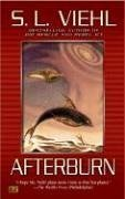 Afterburn by S. L. Viehl