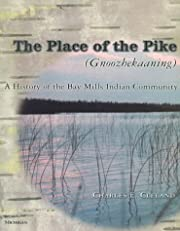 The place of the Pike (Gnoozhekaaning) : a…