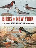 Birds of New York / Eaton ; [illustrations by Louis Agassiz Fuertes]