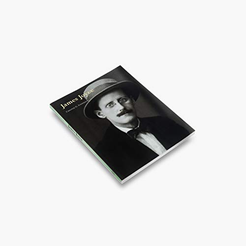 Image for James Joyce (Literary Lives Series)