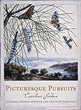 Picturesque pursuits : colonial women artists & the amateur tradition / Caroline Jordan
