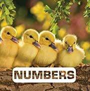 Numbers (Picture This) por Judith Nouvion
