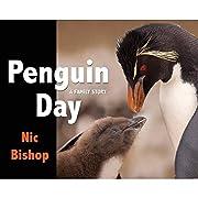 Penguin Day – tekijä: Nic Bishop