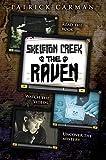 The raven / Patrick Carman