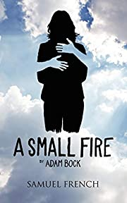 A Small Fire de Adam Bock
