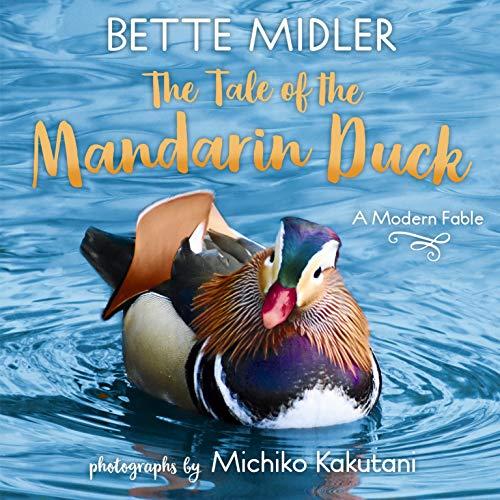 Tale of the Mandarin Duck