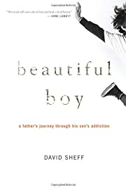 Beautiful boy : a father's journey through…