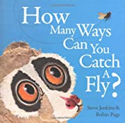 How Many Ways Can You Catch a Fly? de Robin…