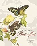 A flutter of butterflies / Michael Braby with Penny Olsen