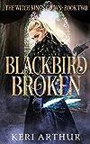 Blackbird Broken by Keri Arthur