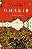 Ghalib: a wilderness at my doorstep: a critical biography