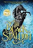 The Black Stallion (1941) (Book) written by Walter Farley