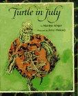 Turtle in July av Saul Singer