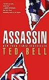Assassin: A Thriller (Hawke (Pocket Star Paperback))