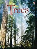 Trees / Lisa Gillespie ; illustrated by Patrizia Donaera