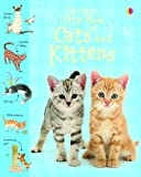 The Usborne little book of cats and kittens / Sarah Khan ; illustrated by Stephen Lambert