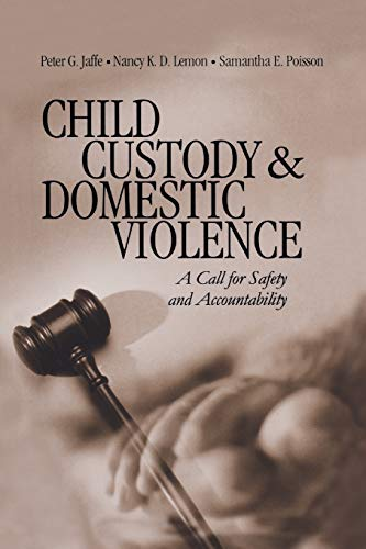 Image for Child Custody and Domestic Violence: A Call for Safety and Accountability (NULL)