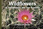 Wildflower of Yellowstone and the Rockies :…